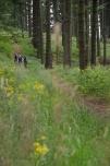 2011-Trails.cz-0830-4698