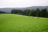 2011-Trails.cz-0830-4865