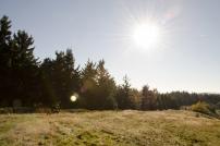 Podzimní Javorníky 20.10.2012